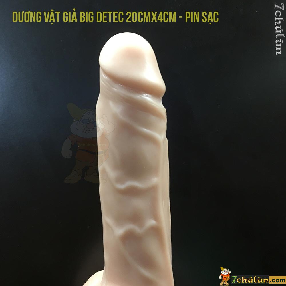Duong Vat Gia Dan Tuong Dieu Khien Tu Xa Big Detec