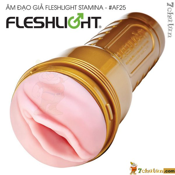 2-am-dao-gia-cao-cap-Fleshlight-Stamina-gold-duc-tu-am-dao-sieu-mau