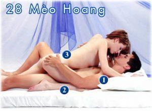 52 Tu The Lam Tinh Vo Chong - Tu The 28 Mèo Hoàng